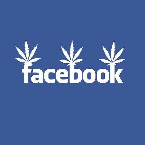 https://420websitedesign.com/tag/facebook-weed/