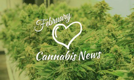 February 2019 Cannabis News Highlights