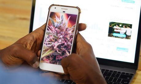California Launches Social Media Campaign to Fight Cannabis Black Market